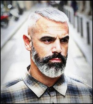 Comment les poils deviennent gris ?