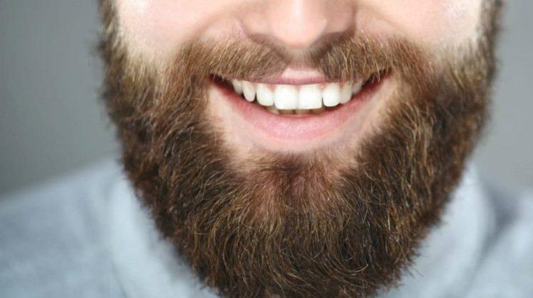 Greffe de barbe : ce qu'il faut savoir